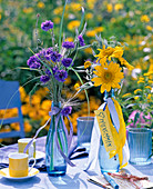 Centaurea (cornflower), Helianthus (sunflower), Anthriscus