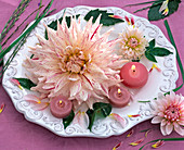 Flowers and leaves of different dahlia on white relief plate