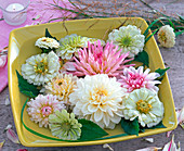 Flowers and leaves of zinnia, dahlia and grass in shell