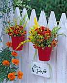 Helenium, Solidago in small red buckets