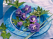 Delphinium flowers and leaves, dark blue with white eye
