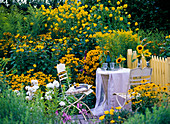 Seating area at the late summer yellow bed