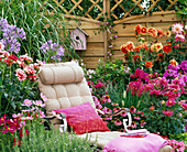 Deck chair in the flowerbed in front of the screen