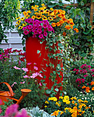 High red plastic tub buried in the flowerbed