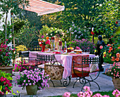 Awning over terrace with covered coffee table and potted plants