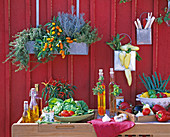 Outdoor kitchen, herbs, vegetables, vinegar, oil, cutlery