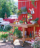 Outdoor kitchen, solid wood kitchen cart in front of red wooden wall