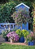 Blue arrangement with tool shed
