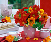 Late summer Tropaeolum bouquet in dotted vase