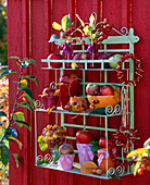 Shelf with apples and ornamental apples