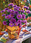 Autumn, leaves, pot, tinker, autumn crocus