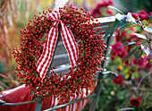 Autumn, berries, fruits, rose hips, wreaths