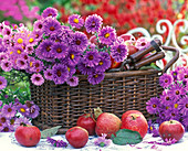 Basket with autumnal flowers