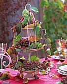 Autumn, table decoration, grapes, wine grapes