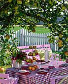 Table laid under malus (apple tree)