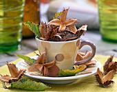 Fagus (beechnuts), Carpinus (hornbeam) in espresso cup