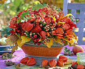 Arrangement of Physalis, Rosa, Hypericum
