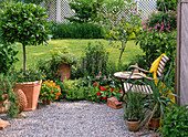 Laurus, Calendula pendula 'Skyfire', Rosemary officinalis
