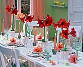 Festive amaryllis table decoration