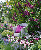 White wicker chair in front of blooming syringa (lilac)