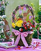 Bellis (Daisies), Viola (pansies) in handle basket