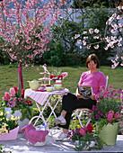 Woman sitting on fragrance terrace, Prunus 'Ruby' (Rosa Kurilenkirsche)