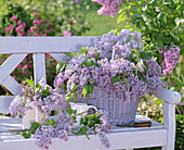 Syringa (lilac) in white basket and jug on white wooden bench