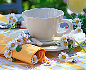 Bellis in a small bouquet and napkin ring around yellow napkin