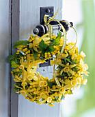 Scented door wreath from Narcissus triandrus 'Hawera', Erysimum