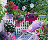 Shadow balcony with fuchsia, impatiens