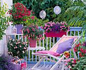 Shadow balcony with fuchsia, impatiens