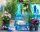 Maritime balcony with Phyllostachys bissetii, Phlox