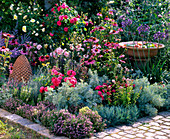 Pink-red bed with herbs and perennials