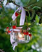 Lantern with rubus on cherry tree branch