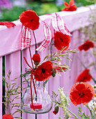 Wind light with papaver (poppy) on balcony railing