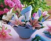 Lilium in bowl with rolled up napkins and cutlery