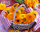 Calendula (Marigold) in basket with checkered cloth