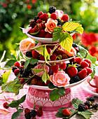 Rubus (blackberries and raspberries) and pink (rose) on Etagere