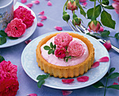Small cake with pink (Rose)