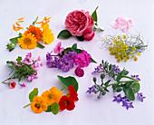 Tableau with edible flowers, Calendula (Marigold), Rosa (Rose)