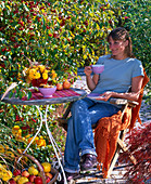 Autumnal seat next to Malus 'Evereste' (ornamental apple tree)