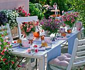 Table decoration with Antirrhinum, Bacopa