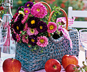 Bouquet of callistephus (China aster) in bag, malus (apple)