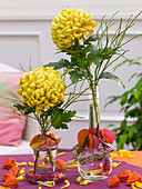 Chrysanthemum (Large-flowered Autumn Chrysanthemum) and Vaccinium