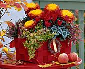 Chrysanthemum (autumn chrysanthemum), cyclamen (cyclamen)