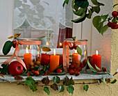Lanterns with malus (ornamental apple, apple), Parthenocissus