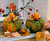 Cucurbita 'Chameleon' (pumpkin) as a candle holder with pink (rose)