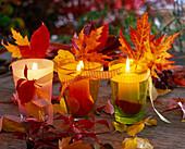 Windlichter mit Herbstlaub von Acer (Ahorn), Prunus (Kirschen)
