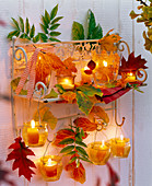Wall shelf decorated with autumn leaves of Acer, Parrotia