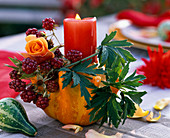 Candle decoration with Rose, Rubus in Cucurbita